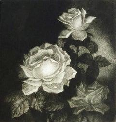 Awakening, mezzotint of rose by Marina Lazareva