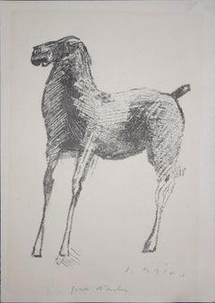 Horse-1 - Rare Original Lithograph - 1948