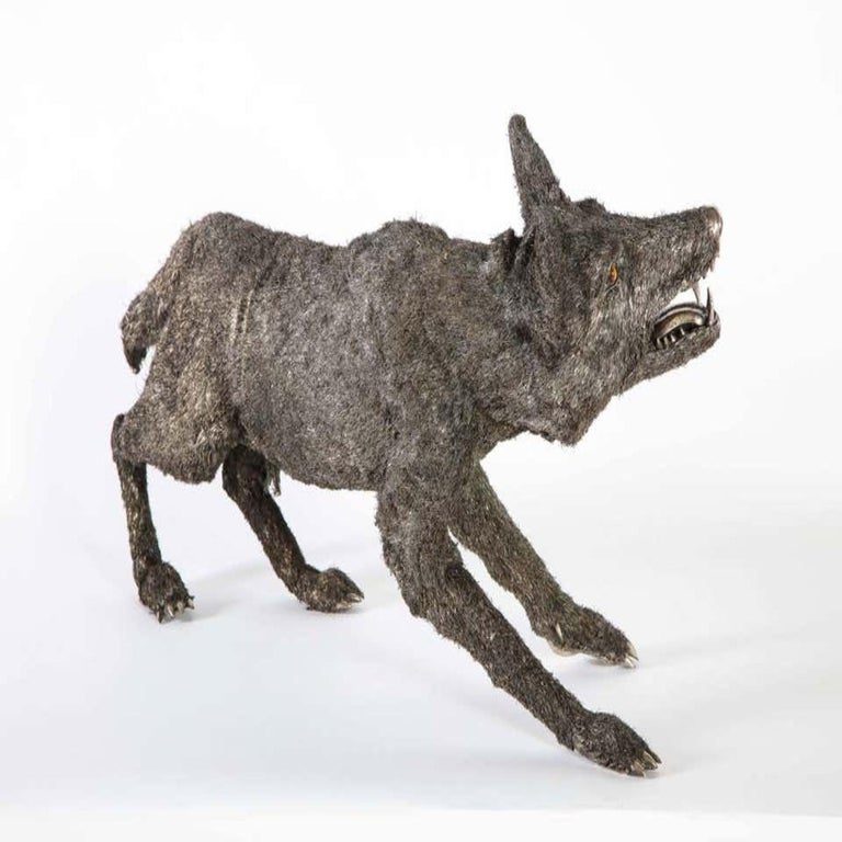 Mario Buccellati a Rare and Exceptional Nearly Life-Size Silver Wolf, circa 1970 For Sale 12