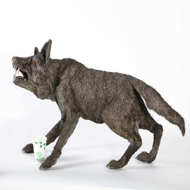 Mario Buccellati a Rare and Exceptional Nearly Life-Size Silver Wolf, circa 1970 For Sale 16