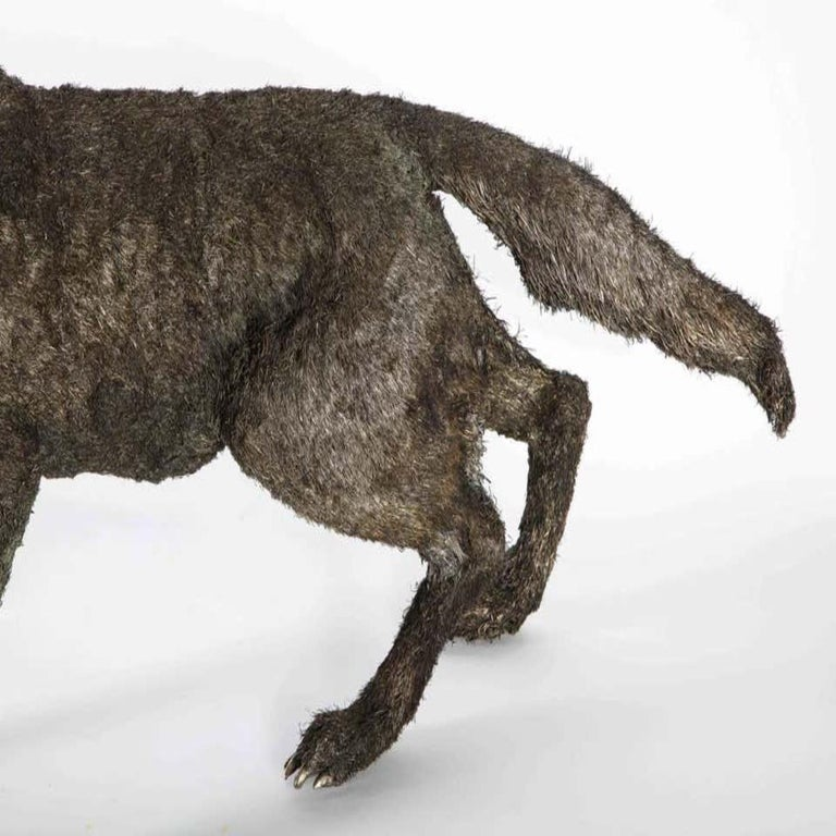 Women's or Men's Mario Buccellati a Rare and Exceptional Nearly Life-Size Silver Wolf, circa 1970 For Sale