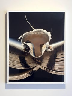 """Book 01"", Framed Photography, Digital Print"