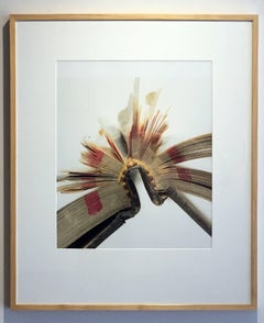"""Book 28"", Framed Photography, Digital Print"