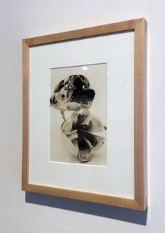 """Flora 2"", Framed Lith Processed Silver Gelatin Print"