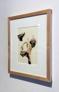 """Flora 6"", Framed Lith Processed Silver Gelatin Print"