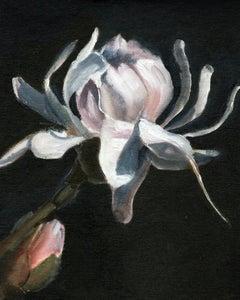 Magnolia, Painting, Oil on Canvas