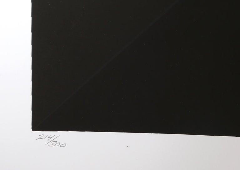 Gamut, Op Art Screenprint by Mark Rowland  For Sale 3