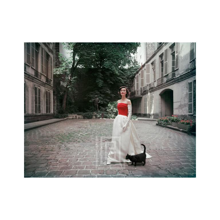 Mark Shaw Color Photograph - Balenciaga Red and White Satin with Black Cat, 1955