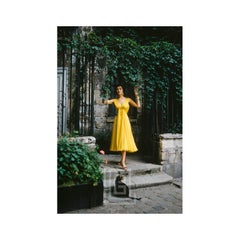Desses Yellow Chiffon in Courtyard with Black Cat, 1955