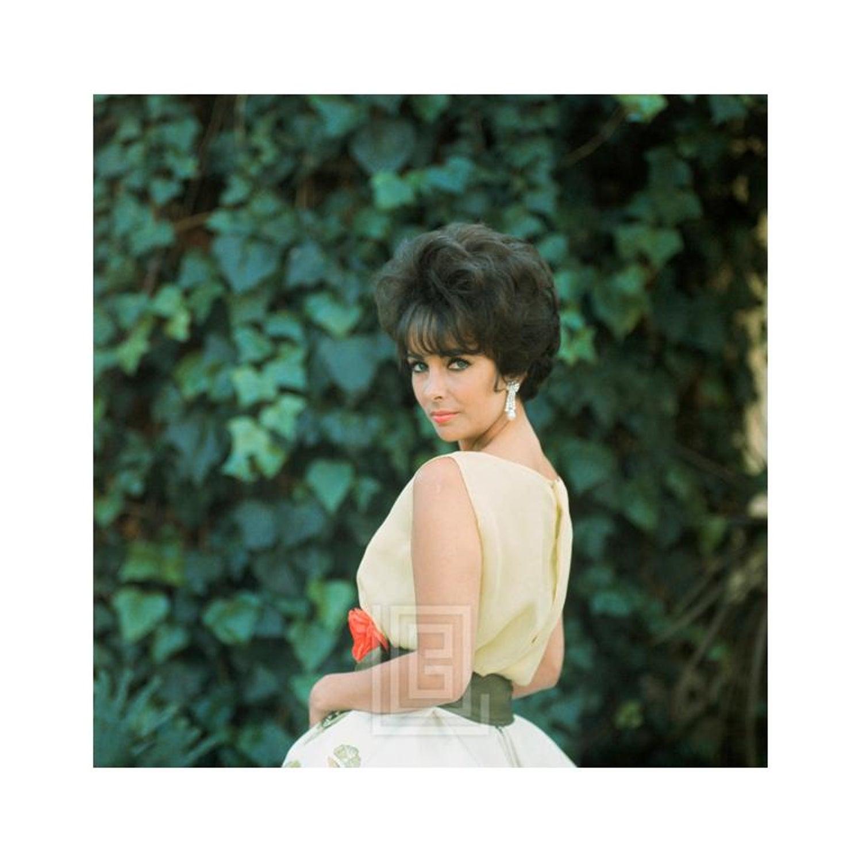 Mark Shaw Elizabeth Taylor In Yellow Chiffon Side View 21961