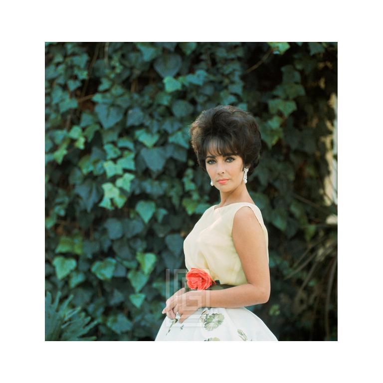 Elizabeth Taylor in Yellow Chiffon, Side View 3, 1961
