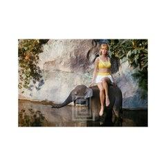 Swimsuit Model at Disneyland with Baby Elephant, 1964