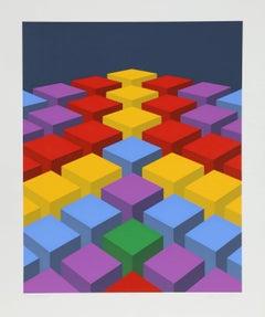 Cubefield X, OP Art Silkscreen by Marko Spalatin