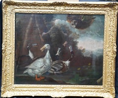 Ducks Surprised by an Owl - British 17thC art Old Master animal oil painting
