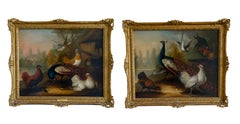 Pair of 17th century oil paintings of peacocks and other birds in a landscape