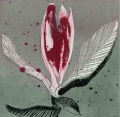 Magnolia 14 - Contemporary Figurative Drypoint Etching Print, Flower, Floral