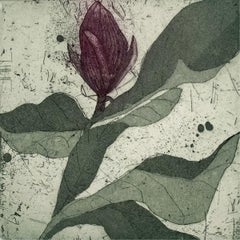 Purple magnolia 2 - Contemporary Figurative Drypoint Etching Print Flower Floral