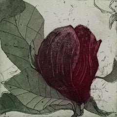Purple magnolia 3 - Contemporary Figurative Drypoint Etching Print Flower Floral