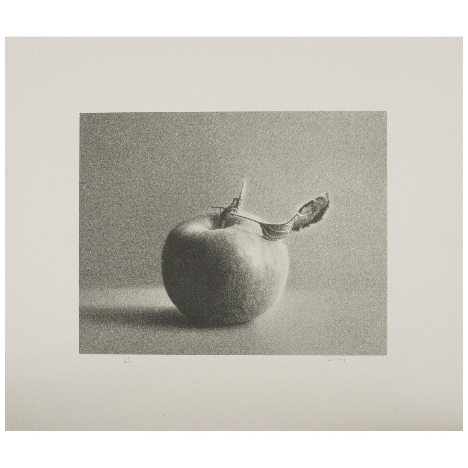 """Martha Alf """"Apple"""" Still Life Lithograph Print Limited Edition of 250 Signed"""