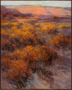 New Mexico Twilight