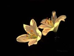 Elisas lilies  original realism painting