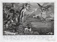 Antique hunting scene print with a swan by Ridinger - Engraving - 18th century