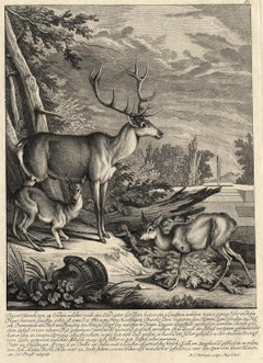 Antique hunting scene print with several deers by Ridinger - Engraving - 18th c