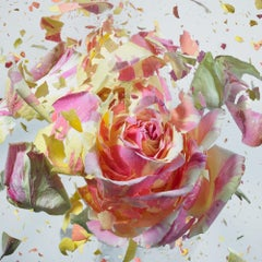 Martin Klimas, Pink Rose, Exploding Flower, Photograph, Abstract Explosion
