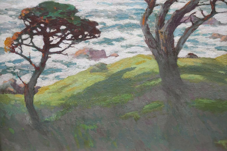 Monterey Cypresses, Pebble Beach Carmel - Landscape 5
