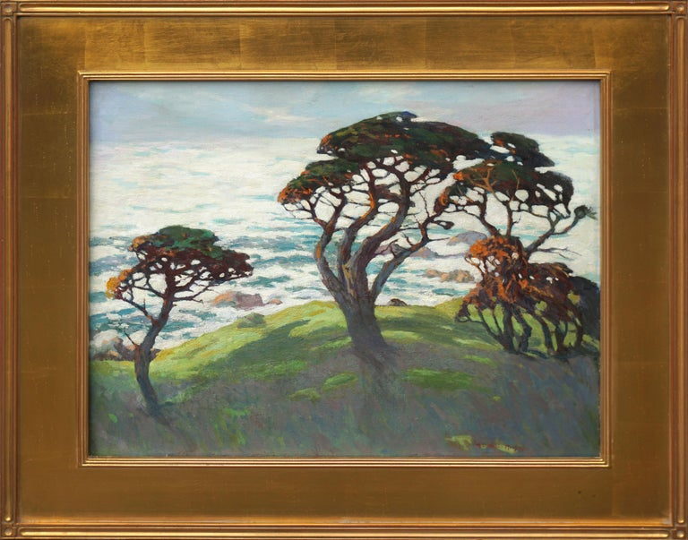 Monterey Cypresses, Pebble Beach Carmel - Landscape 1