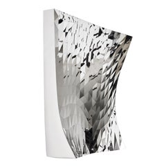 Mashing Mesh Object #MS-4 Stainless Steel Wall Mirror Decoration Sculpture