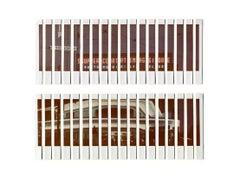 Italian Oil Style 2 - Massimiliano Muner  Polaroid Instant Film