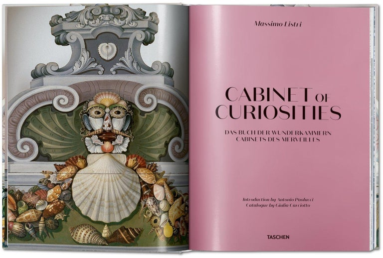 Cabinets of curiosities fascinated people of the 16th and 17th centuries. From crocodiles, minerals, and corals to paintings, ivory trophies, measuring instruments, and incredible automata, it was a glimpse into a world full of natural wonders and