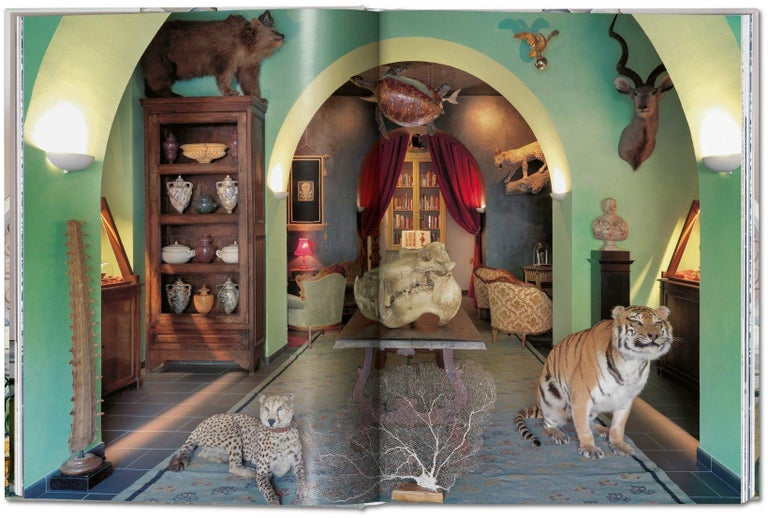 Massimo Listri, Cabinet of Curiosities For Sale 2