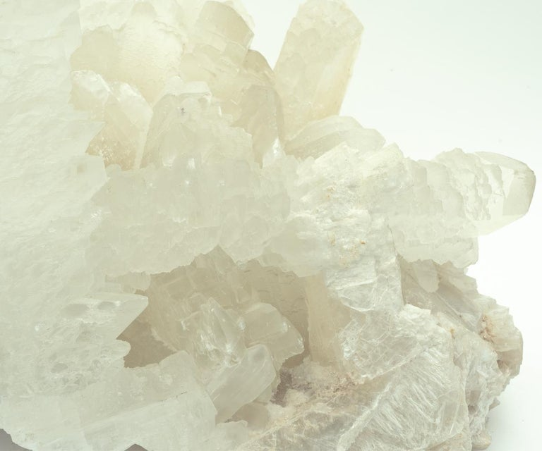 Massive Fish Tail Angel Wings Selenite Crystal For Sale 3