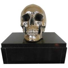 Massive Nickeled Resin Skull Signed Y.D., Belgium, 1989