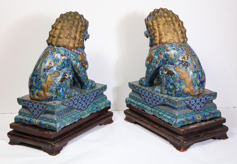 Massive Pair of Chinese Cloisonne Enamel Foo Dogs Lions on Wood Stands For Sale 12
