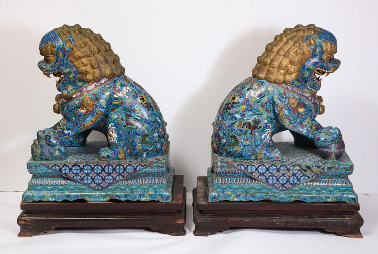 Massive Pair of Chinese Cloisonne Enamel Foo Dogs Lions on Wood Stands For Sale 14