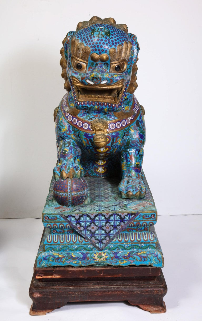Massive Pair of Chinese Cloisonne Enamel Foo Dogs Lions on Wood Stands In Good Condition For Sale In New York, NY