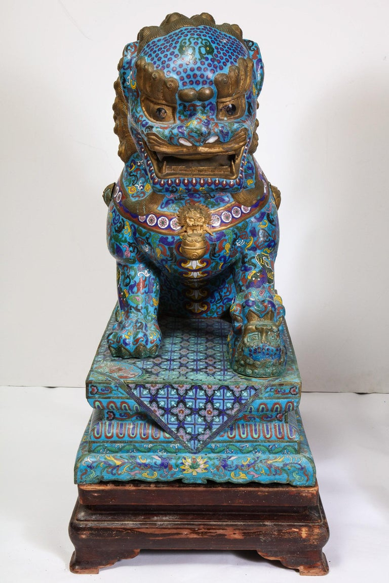 20th Century Massive Pair of Chinese Cloisonne Enamel Foo Dogs Lions on Wood Stands For Sale