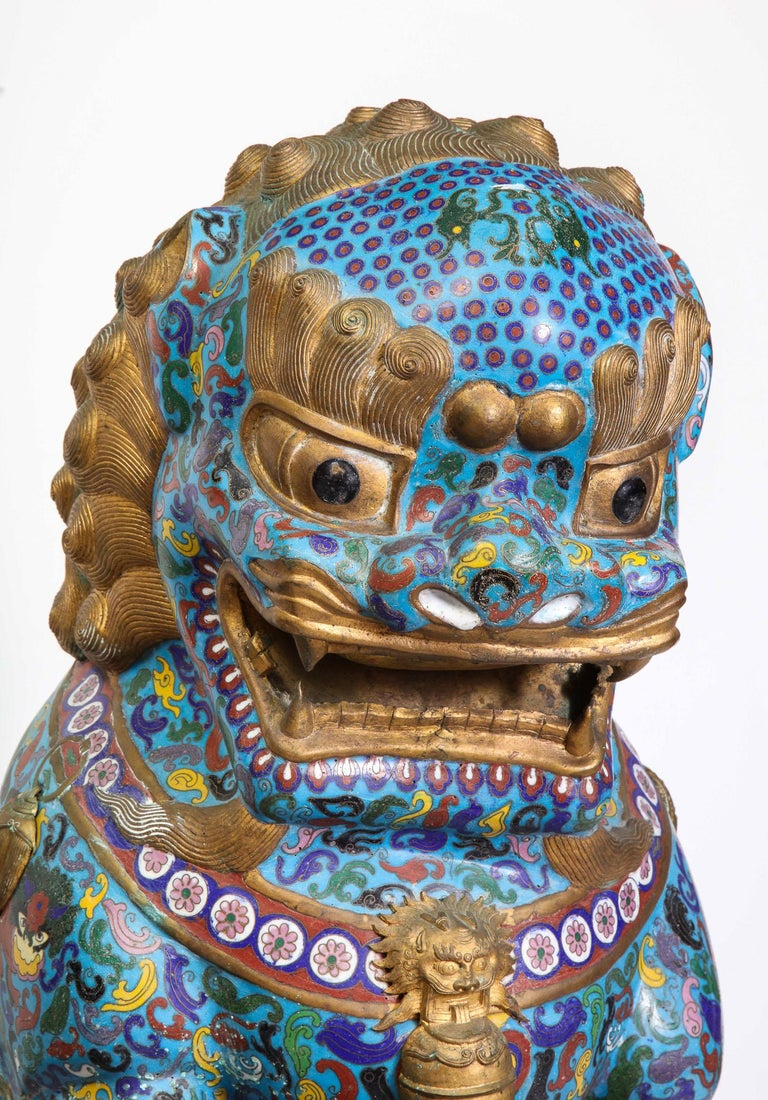 Massive Pair of Chinese Cloisonne Enamel Foo Dogs Lions on Wood Stands For Sale 3
