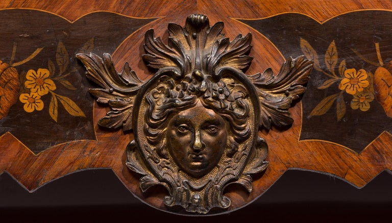 Bronze Matched Pair of 19th Century Louis XVI Style Floral Marquetry Side Cabinets For Sale
