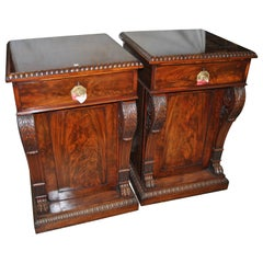 Matched Pair of English 19th Century Mahogany Pedestals / Stands / Cabinets