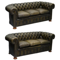 Matching Pair of 1950s Chesterfield Leather Sofas Feather Cushions Coil Sprung