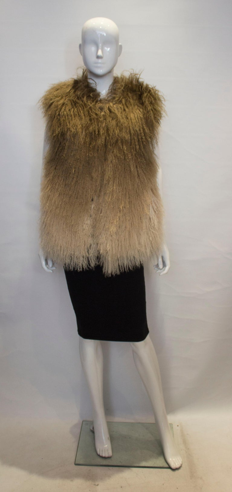 A chic mongolian fur gillet  by Matthew Williamson. The gillet is in various shades of brown and is fully lined.