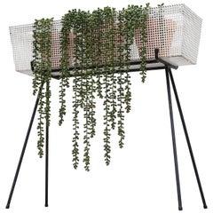 Mathieu Matégot 'Attributed' Perforated Metal Flower Box