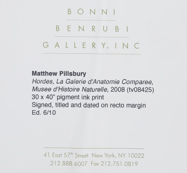 Hordes, La Galerie d'Anatomie Comparée, Musée d'Histoire Naturelle For Sale 1
