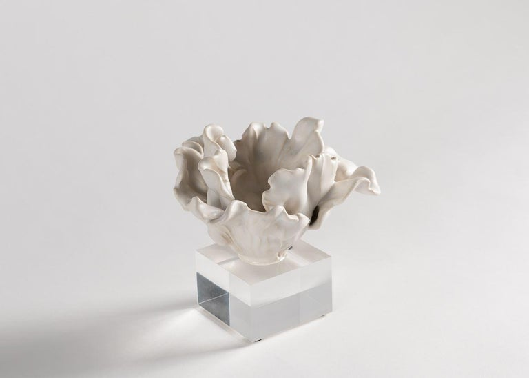 Using fine white porcelain and glazes, which he crafts himself, Matthew Solomon creates sculptures of beauty, with an element of the unexpected. Repetition of form and color creates order within the chaotic floral camouflage.