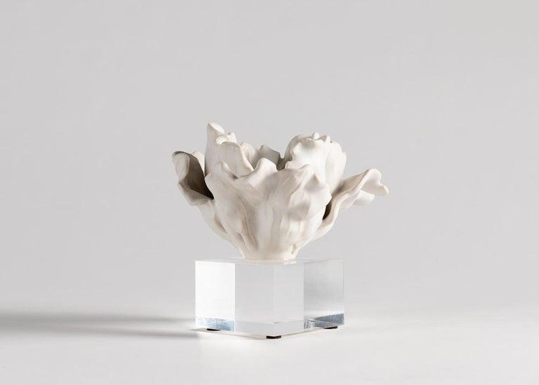 American Matthew Solomon, Tulip Sculpture on a Lucite Base, United States, 2019 For Sale