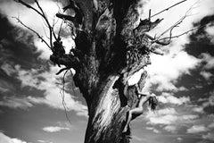 Half Angels Half Demons #12, Medium Black and White Archival Pigment Print